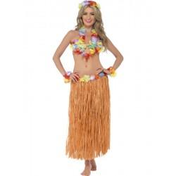 Disfraz de Hawaiana Bailarina Hula